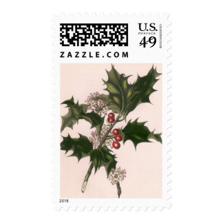 Vintage Christmas, Holly Plant with Red Berries Postage