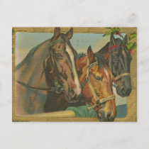 Vintage Christmas Horses Holiday Postcard