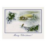 Vintage Christmas houses bird Postcard