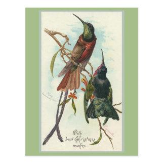 Vintage Christmas King Humming Birds Post Cards