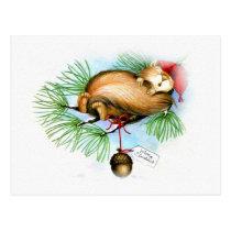 vintage christmas squirrel dreaming postcard