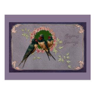 Vintage Christmas Swallows Postcard