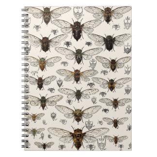 Vintage Cicadas Illustration Spiral Notebook