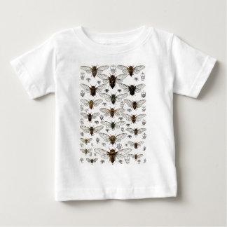 Vintage Cicadas Illustration Tee Shirts