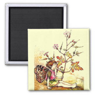 Vintage Cicely Mary Barker Pixie Flower Fairy 2 Inch Square Magnet