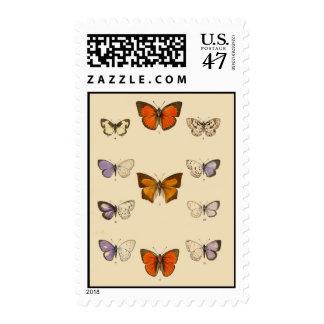 Vintage Circa 1880 Butterflies Postage Stamps