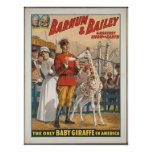Vintage: circo Barnum y Bailey - Poster