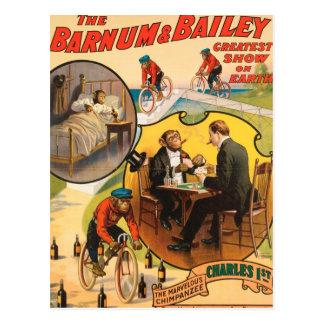 Vintage: circo Barnum y Bailey - Tarjeta Postal