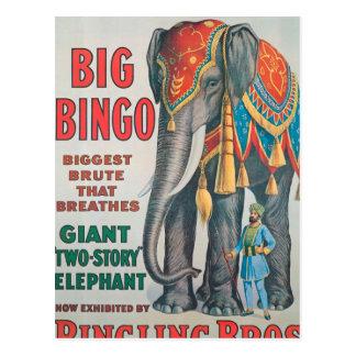 Vintage: circo Barnum y Bailey - Tarjetas Postales
