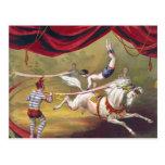 Vintage Circus Art Postcard