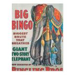 postcard, circus, vintage, barnum, bailey,