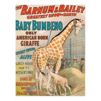 Vintage : circus Barnum & Bailey - Postcard