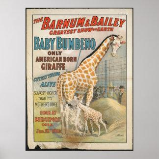 Vintage : circus Barnum & Bailey - Print