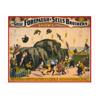 Vintage circus elephants acrobats Forepaugh & Sell Postcard