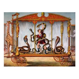 Vintage Circus Snake Handler Postcard