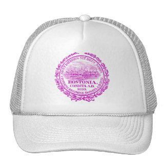 Vintage City of Boston Seal, purple Trucker Hat