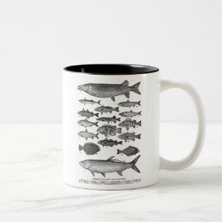 Vintage Classic Fish Fishing Illustration Two-Tone Coffee Mug