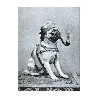 Vintage Classy Pug Photograph Canvas Print