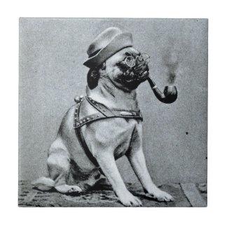Vintage Classy Pug Photograph Ceramic Tile