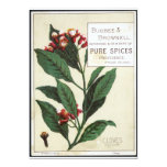 Vintage Cloves 5x7 Paper Invitation Card