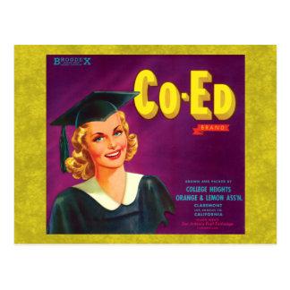 Vintage Co-Ed Orange & Lemon Label Postcards