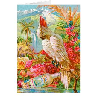 Vintage Cockatoo Greeting Card