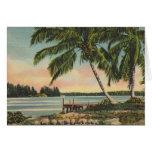 Vintage coconut palms card
