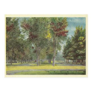 Vintage Colorado Springs Postcard