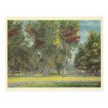 Vintage Colorado Springs Tarjetas Postales