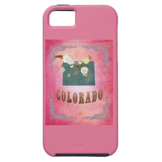 Vintage Colorado State Map- Candy Pink iPhone 5 Covers