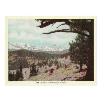 Vintage Colorado Tarjeta Postal
