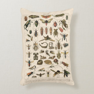 Vintage Colorful Insects Entomology Taxonomy Decorative Pillow