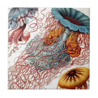 Vintage Colorful Jellyfish Ceramic Tiles