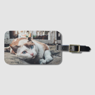 Vintage Colors Cat Luggage Tag