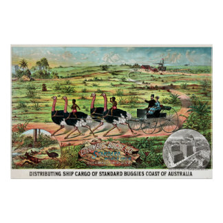 Vintage Columbus Buggy Company Australian Ostrich Poster
