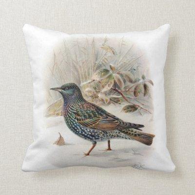 Vintage Common Starling Bird Throw Pillow