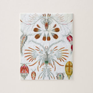 Vintage Copepoda Ocean Animals by Ernst Haeckel Jigsaw Puzzle