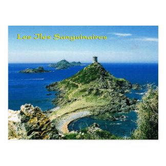Vintage Corsica, les Iles Sanguinaires Postcard