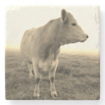 Vintage Country Cow Farm Coaster