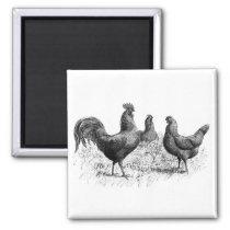 Vintage Country Farm Hens Fridge Magnet