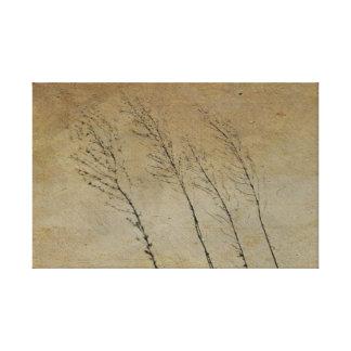 Vintage Country Series: 3 Grass Stalks Canvas Print