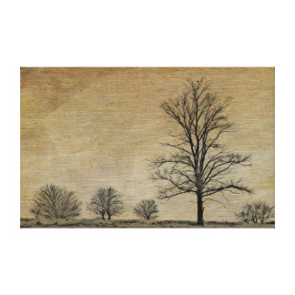 Vintage Country Series: Trees Canvas Print