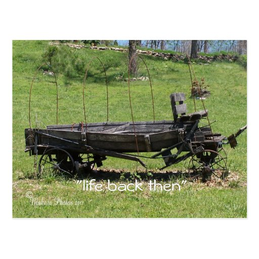 Vintage Covered Wagon- customize Postcard