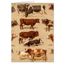 Vintage Cow Calf Bull Dairy Cows Farm Illustration Card