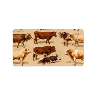 Vintage Cow Calf Bull Dairy Cows Farm Illustration Label