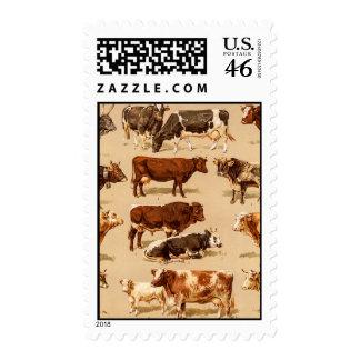 Vintage Cow Calf Bull Dairy Cows Farm Illustration Stamp