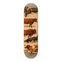 Vintage Cow Calf Bull Dairy Cows Farm Illustration Skateboard Deck