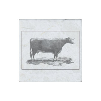 Vintage cow etching magnet