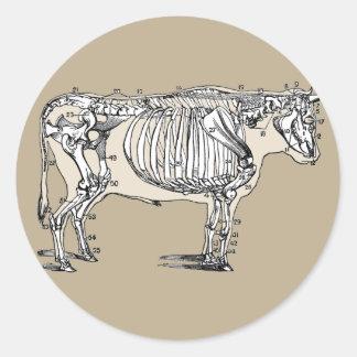 Vintage Cow Skeleton Classic Round Sticker