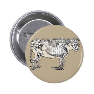 Vintage Cow Skeleton Pinback Button